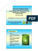 Development of transgenic papaya with delayed ripening characteristics containing the ACC oxidase gene via Agrobacterium-mediated transformation