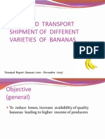 Improved transport shipment of different varieties of bananas