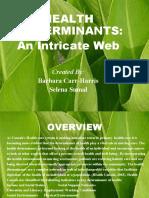 HealthDeterminants3