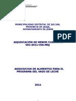bases del PVL 2011