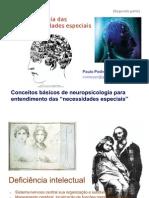 2_Neuropsi_Deficiencias_C_Basicos