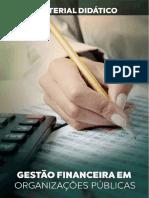 Gestão-Financeira-em-Organizações-Públicas