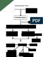 Pathophysiology of BPH