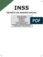 Apostila - INSS_2010_Atualizada