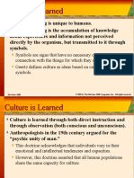 Culture and Culture Theory
