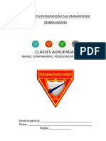 Classes Agrupadas - 13 Anos