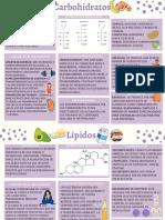 Mapas de Las Biomoleculas