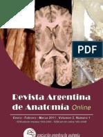 RevArgAnatOnl-2011-2(1)-p1-34-fulltext