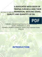 Fungal flora associated with seeds of tuba-tuba (Jatropha curcas l.) and their effects on germination, seedling stand, quality and quantity of oil
