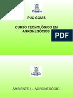 vdocuments.net_aula-13-agronegocio-brasileiro