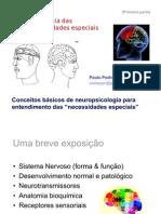 1-Neuropsi_Deficiencias_C_Basicos