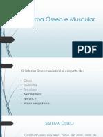 3 - Sistema Ósseo e Muscular