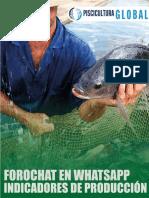 GUIA-DE-CONTENIDO-FOROCHAT-INDICADORES-DE-PRODUCCIÓN