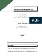 Bio Degradable Paper Bags