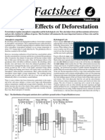 Biological Effect of Deforestation