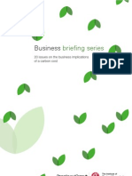 20 Issues on the Business Implications of a Carbon Cost