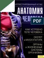 Kasan Adolfo Anatomiia Cheloveka Illiustrirovannyi Atlas