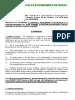 Alegaciones Plan General 2011