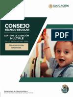 Guía Primera Sesión Ordinaria CTE CAM 2021
