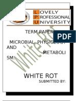 WHITE ROT