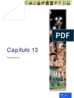 ABC Petroleo y gas Cap 13