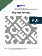 Manual Registros de Pozos CIED Pdvsa