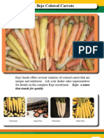 Colored Carrots Nov 2007