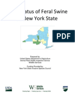 2010 Status of Feral Swine in NY