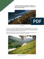 O Vale do Douro