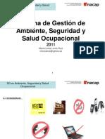 SG de Ambiente, Seguridad y Salud Ocupacional
