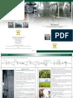 processo fabricação biodiesel