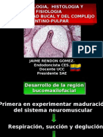 Embriología Dental