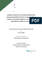 Travail_de_Bachelor_Pamela_Solimine