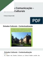 Aula X - Estudos Culturais