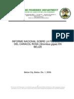 INFORME NACIONAL SOBRE LA PESQUERIA DEL CARACOL ROSA (Strombus gigas) EN BELIZE