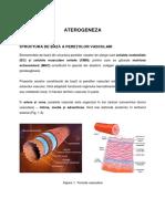 ATEROGENEZA (1)