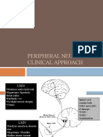Peripheral Neuropathy Aida