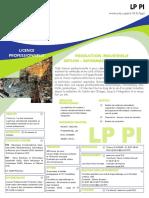 fiche_LP_PI101212