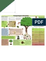 cartaz resumo compostagem doméstica
