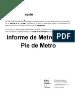 Informe Pie de Metro