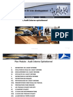 Audit Interne Operationnel PDF