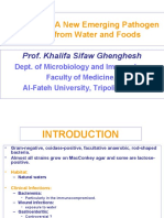 Aeromonas-A New Emerging Pathogen Isolated From Water and Foods