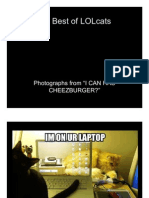Best of LOLcats