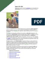 DEFINICIONES DE SEGUROS