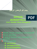 Lecture 23 Bordetella