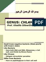Lecture 29 Chlamydia