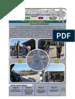 Companhia de Engenharia de Força de Paz – Haiti – Informativo N° 82 da BRAENGCOY