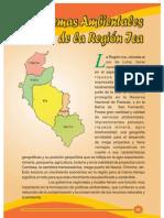 ambiental 2008 pdf