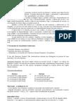 síntese cap.  1 aberastury