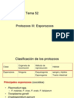 Tema 52- OSCAR- Protozoos Esporozoos - 15-1-2007